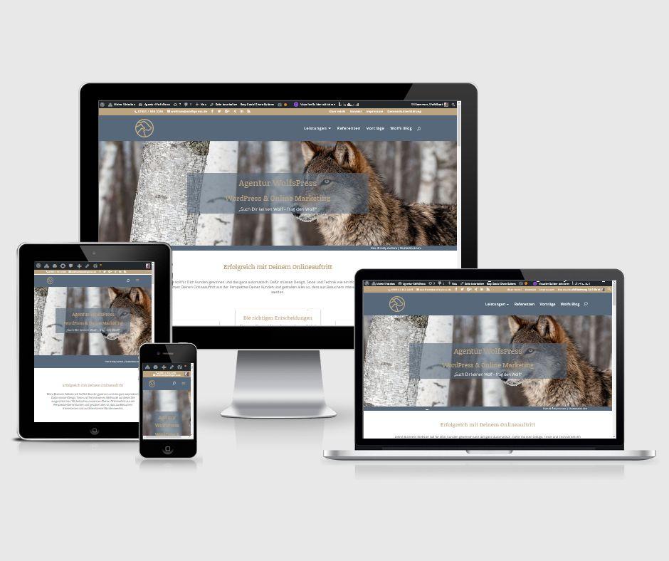 eigene Website schnell und günstig erstellen