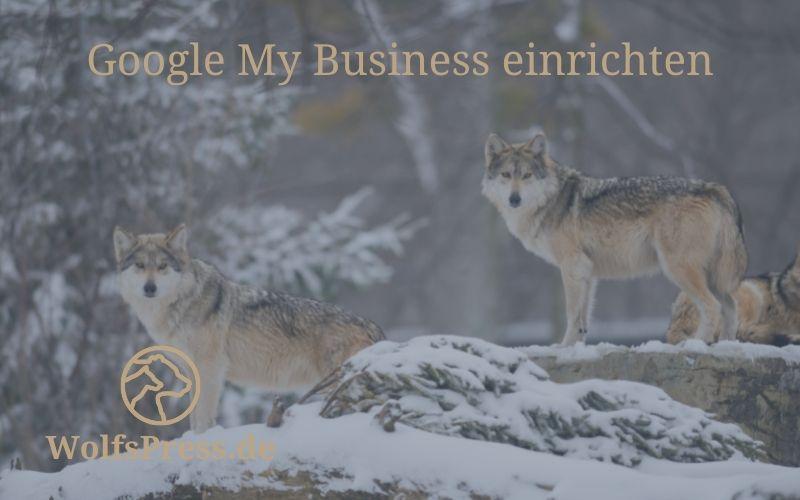 Google My Business für Dein lokales Unternehmen einrichten