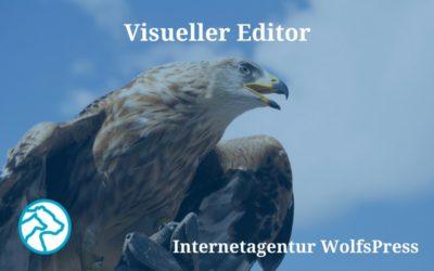 Was Du schon immer über Deinen visuellen Editor wissen wolltest