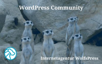 WordPress Community, WordCamp und WordPress Meetup – meine Einblicke